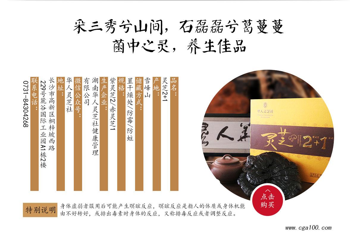 2+1产品单页1200_02.jpg